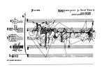sylvano-bussoti-rhyzome